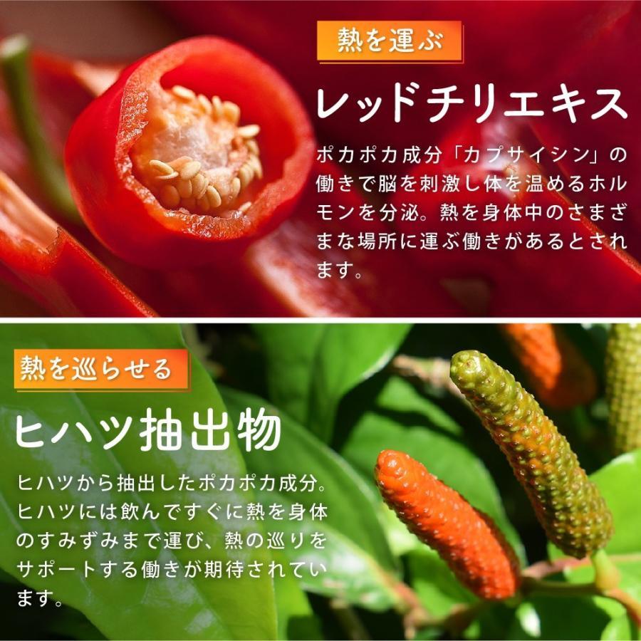 温活 冷え サプリ ひだまりショウガ 冷え対策 ショウガオール ショウガ サプリ60粒30日分 yonekichi 08