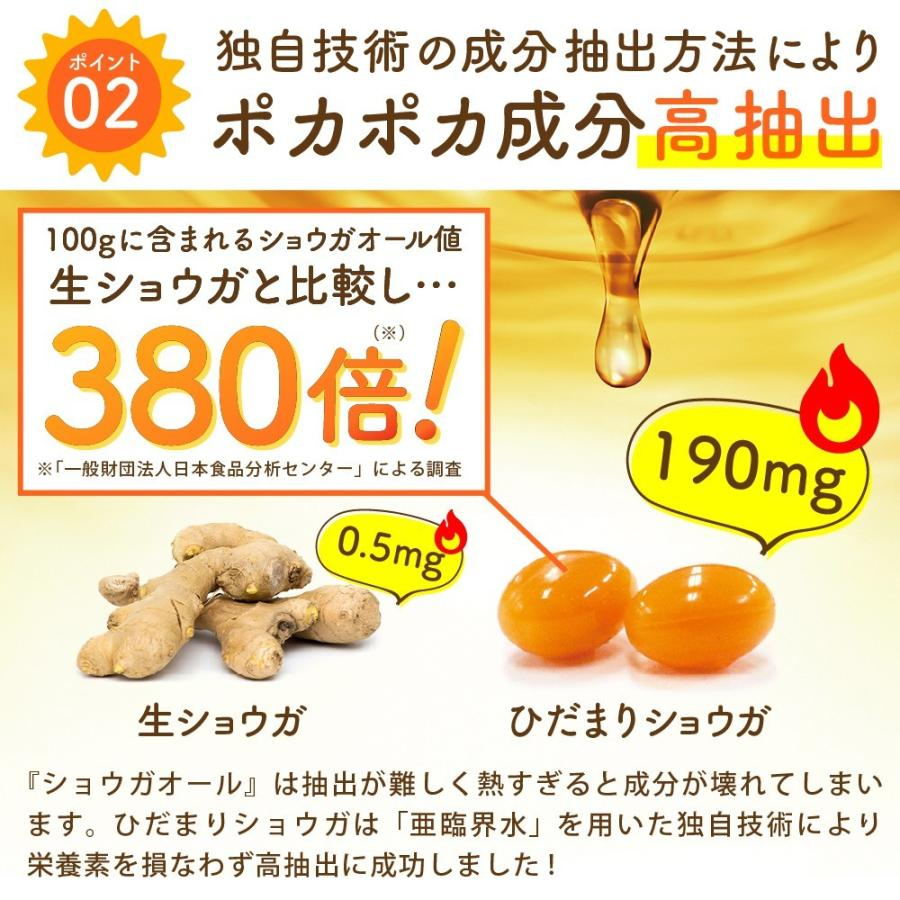 温活 冷え サプリ ひだまりショウガ 冷え対策 ショウガオール ショウガ サプリ60粒30日分 yonekichi 09