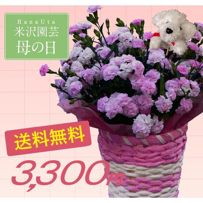 母の日 ギフト プレゼント ピンク カーネーション  バンビーノ バルーンピックつき 送料無料|yonezawaengei|05