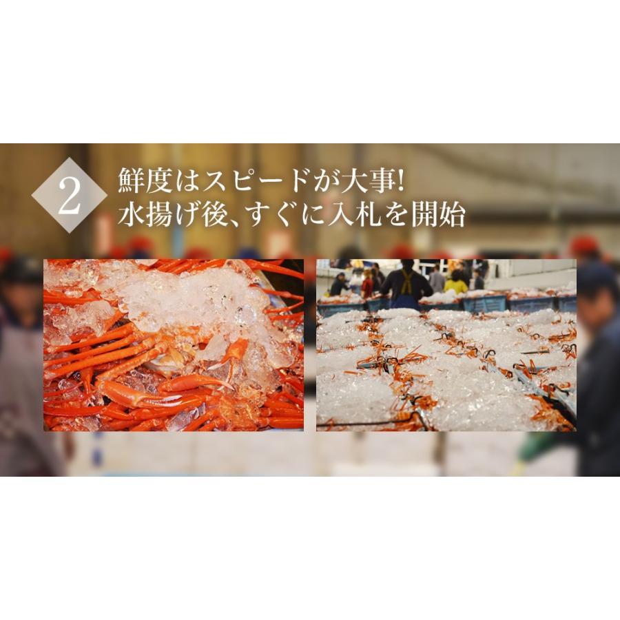 訳あり 送料無料 鳥取県 境港産 ボイル 紅ずわい蟹 カニ 蟹 訳あり 3尾SET【紅ずわいW3尾】|yorokobi-marche|05