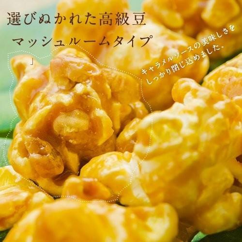 ハワイ ポップコーン マカダミアナッツ(塩味)withハワイアンキャラメルクリスプ 160g|youbetsuen-y|04