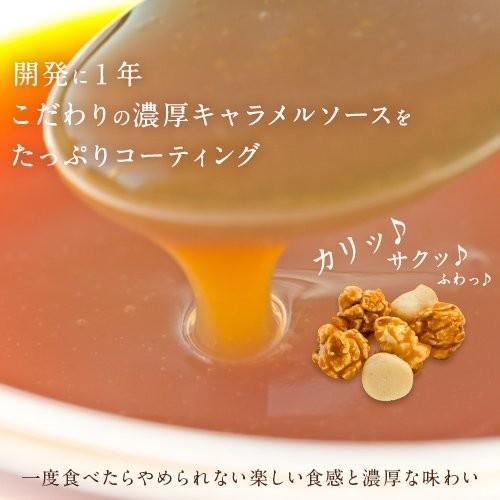 ハワイ ポップコーン マカダミアナッツ(塩味)withハワイアンキャラメルクリスプ 160g×3袋|youbetsuen-y|03