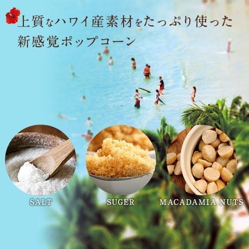 ハワイ ポップコーン マカダミアナッツ(塩味)withハワイアンキャラメルクリスプ 160g×4袋|youbetsuen-y|05