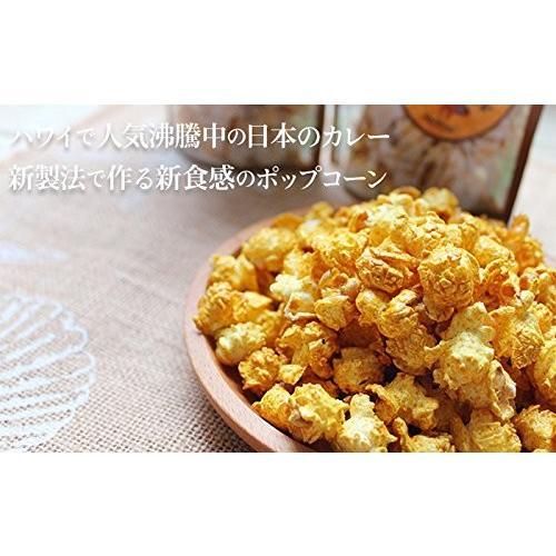 ハワイ ポップコーン ジャパニーズカレー 50g×2袋|youbetsuen-y|02