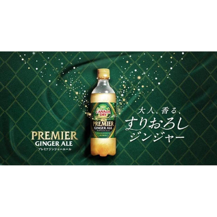 訳あり カナダドライ プレミアジンジャーエール 380ml×24本 ペットボトル コカコーラ コカ・コーラ (賞味期限2021/9/29) youbetsuen-y 04
