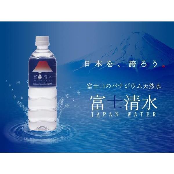 富士清水 JAPANWATER 500mL×24本×2ケースセット 天然水 バナジウム天然水 ミツウロコビバレッジ yourheimat 03