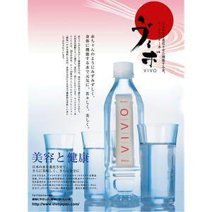 天然水 ナノクラスター水 VIVO ヴィボ 500ml×24本×1ケース 送料無料|yourheimat