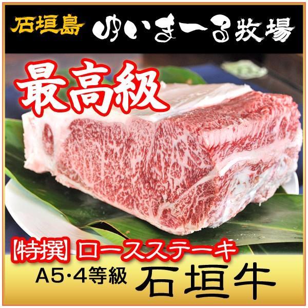 牛肉 肉 黒毛和牛 特撰 ロースス...