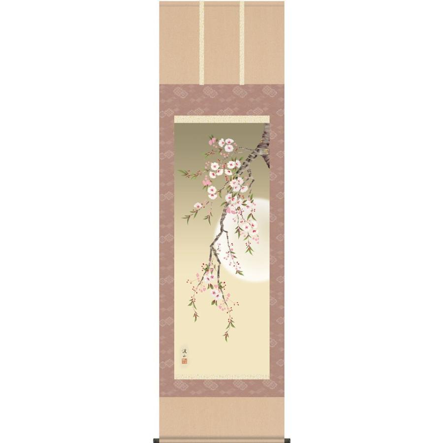 掛軸(掛け軸) 春用 四季花鳥 夜桜 伊藤渓山作 尺五立 約横54.5cm×縦190cm(送料無料)d8909