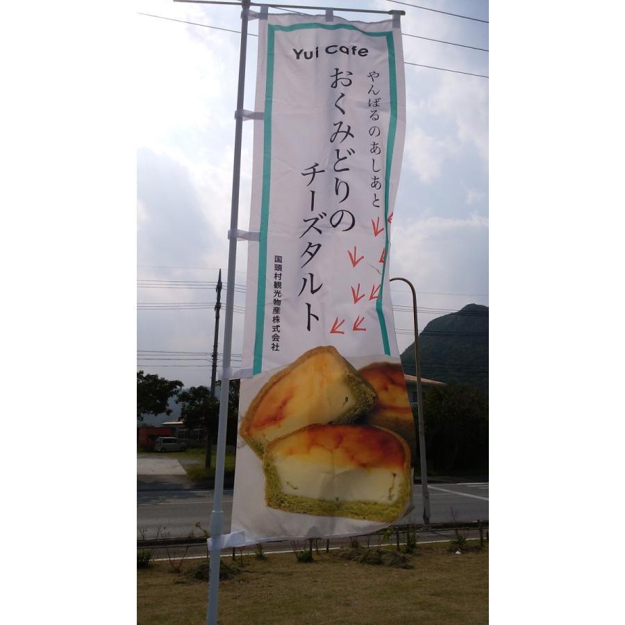 冷)やんばるのあしあと・おくみどりのチーズタルト|yuiyui-k|06