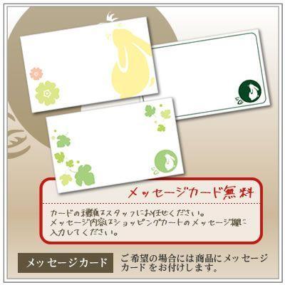 【深蒸し茶】お茶:高級深蒸し茶「なつめ缶」80g2本箱入り|yukiusagi|06