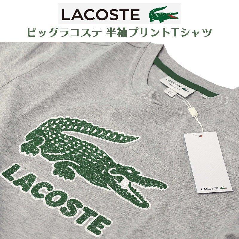 ラコステ Tシャツ メンズ 半袖 ブランド 大きい オシャレ Lacoste 綿100% 父の日 プレゼント カットソー XXL #th-0063-51|yumesse|10