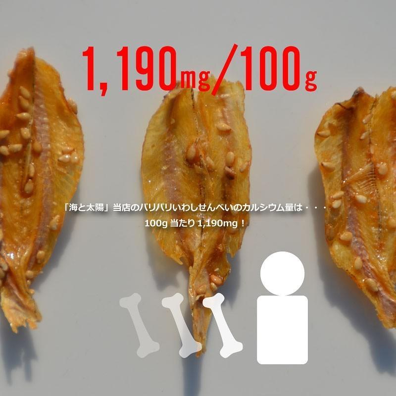 <いわしせんべい172g> 鰯 イワシ カルシウム おやつ おつまみ|yummy39|04