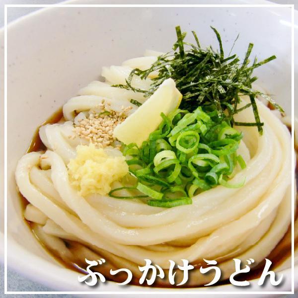冷凍 生うどん 讃岐うどん 1kg 8玉分 ゆらくや|yurakuya-udon|10