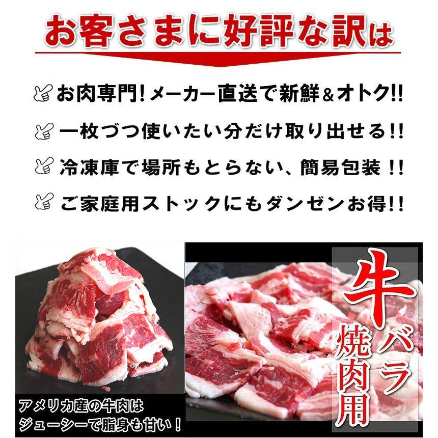 バーベキュー 肉 食材 BBQ セット 焼肉 牛肉 豚肉 鶏肉 合計 2.8kg 10人前〜15人前 わけあり 訳あり アウトドア yuuzen-hb 04