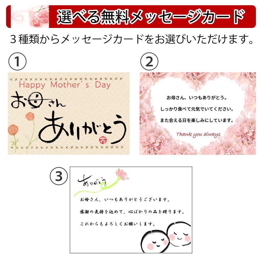 遅れてごめんね 母の日 2021 ギフト 惣菜 セット 無添加 ほほえみセット 5種 7個入 期間限定 中身が見える 詰め合わせ|yuuzen-hb|06