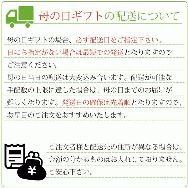 遅れてごめんね 母の日 2021 ギフト 惣菜 セット 無添加 ほほえみセット 5種 7個入 期間限定 中身が見える 詰め合わせ|yuuzen-hb|10