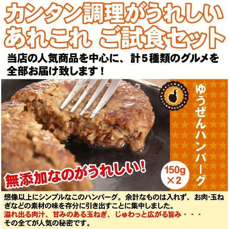 肉 惣菜セット 冷凍 無添加 お試しセット お弁当 おかず グルメ ご試食 おうちごはん 応援 簡単調理 yuuzen-hb 03