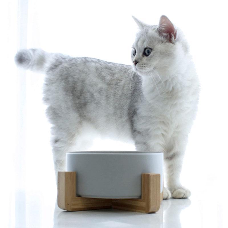 ペット用 食器 陶器 食べやすい 猫用 フードボウル 木製 スタンド ねこ 犬 ウォーターボウル 脚付 子猫 ご飯 皿 食器台 ペット食器 餌皿 ペット用食器 z-fashion 04