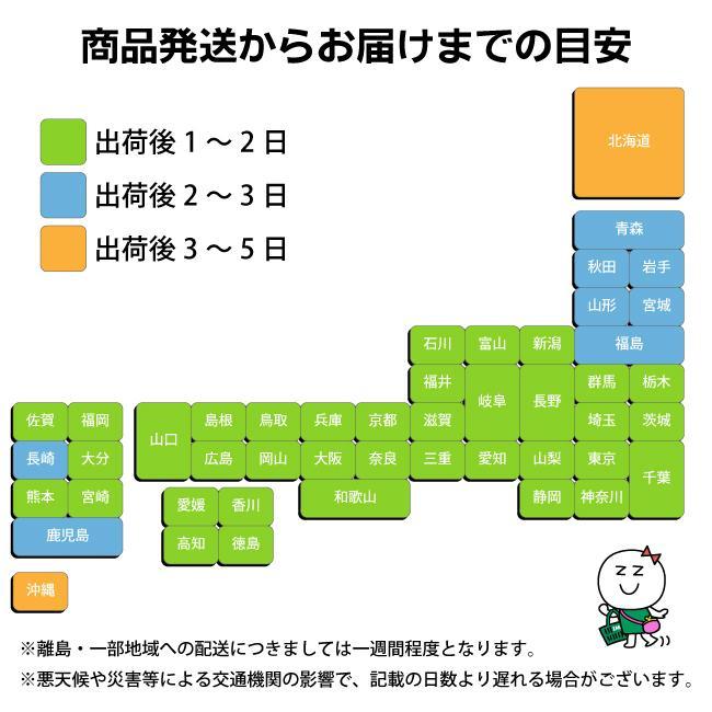 ■ポスト投函■[アイリスオーヤマ]ナノエアーマスク ふつうサイズ 7枚入 (PK-NI7L)【3個セット】おひとり様1セットまで|zagzag2|04