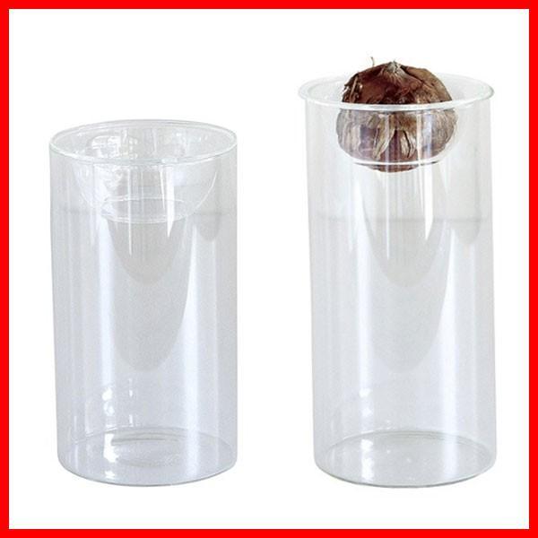 BULB VASE ショート&ロング セット 球根 水栽培 ガラス容器 花瓶 ガラスケース 鉢 フラワーベース おしゃれ|zakkayafree