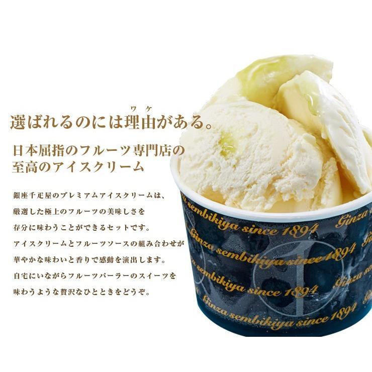 父の日 プレゼント 銀座千疋屋 銀座プレミアムアイス 10個 アイスクリーム お中元|zenzaemon|04