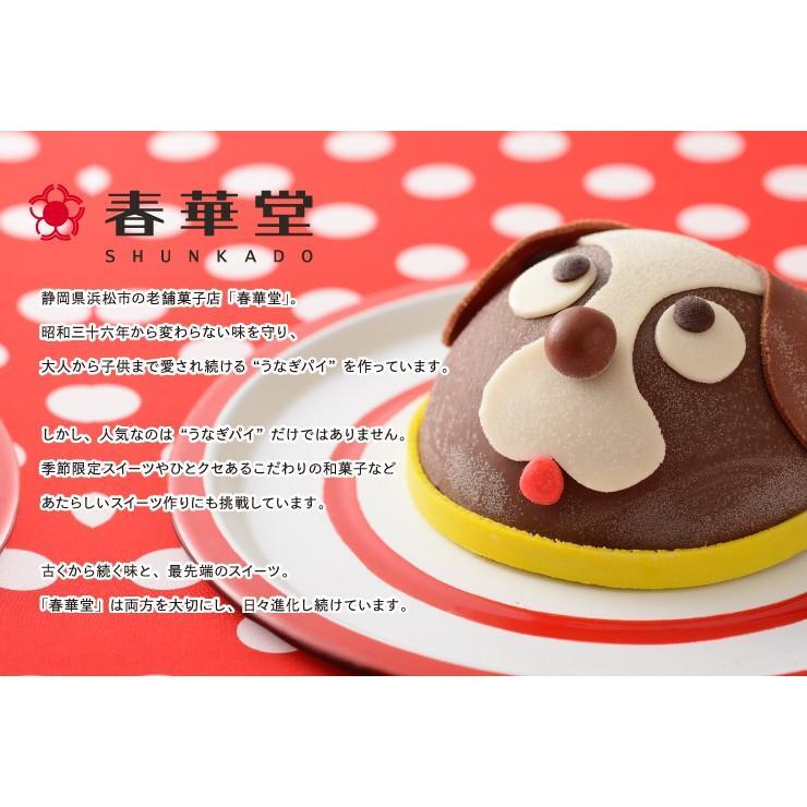 誕生日ケーキ バースデー 春華堂 クリスタルアイスケーキ チーキーワンワン アイスクリームケーキ zenzaemon 07