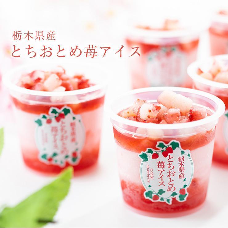 お歳暮 アイス ギフト 栃木県産 とちおとめ苺アイス 6個 アイスクリーム いちご イチゴ 御歳暮 zenzaemon