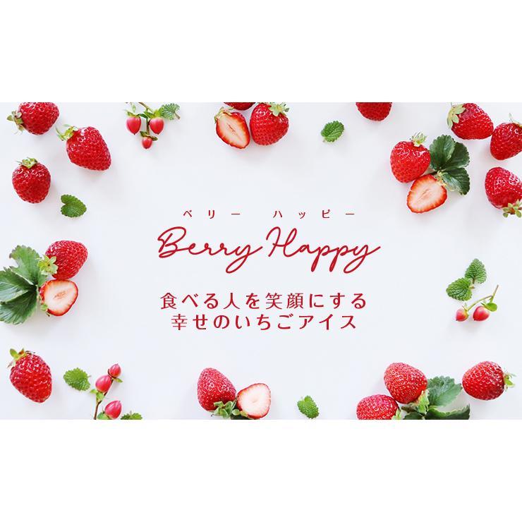 お歳暮 アイス ギフト 栃木県産 とちおとめ苺アイス 6個 アイスクリーム いちご イチゴ 御歳暮 zenzaemon 03
