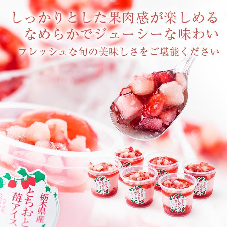 お歳暮 アイス ギフト 栃木県産 とちおとめ苺アイス 6個 アイスクリーム いちご イチゴ 御歳暮 zenzaemon 05