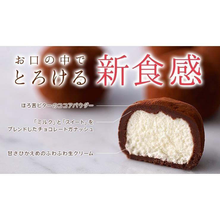 クリーム チョコ 菓子 生 お