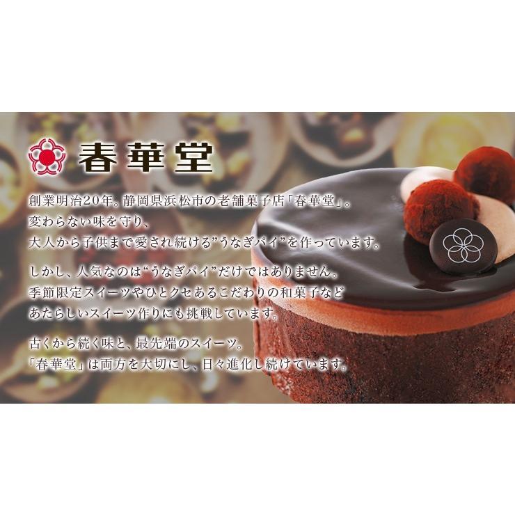 誕生日ケーキ バースデー クリスタルアイスケーキ 濃厚トリュフココ チョコレートケーキ|zenzaemon|05