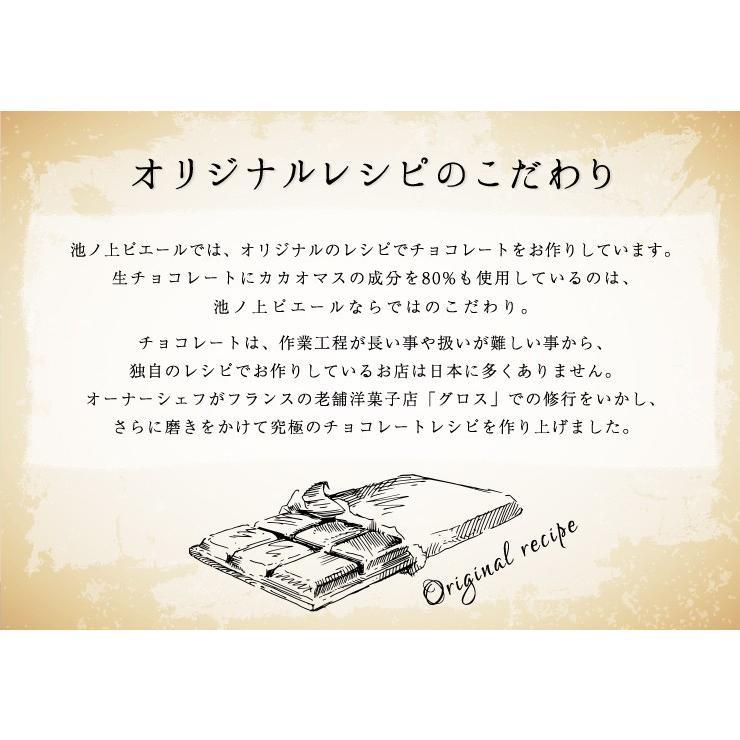 ホワイトデー お返し 2021 チョコ 池ノ上ピエール ショコラ・オランジュ5枚入り ギフト|zenzaemon|04