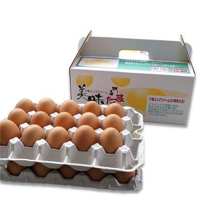 ブログに書きたくなる卵 産地直送 養鶏場直送 美味たま(30個)|zeppinchibahonpo|03