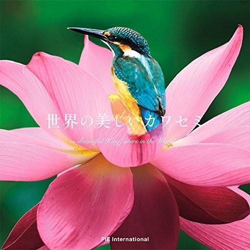 世界の美しいカワセミ 中古 古本|zerothree