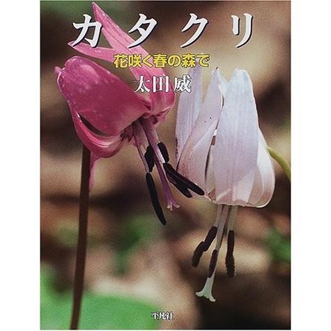 カタクリ―花咲く春の森で 中古 古本 zerothree