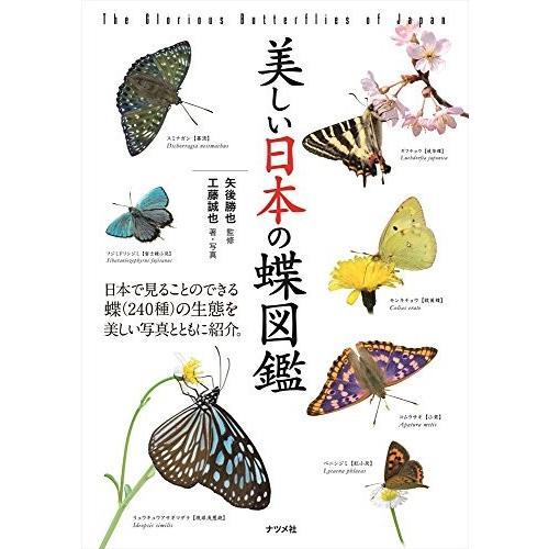 美しい日本の蝶図鑑 中古 古本 zerothree