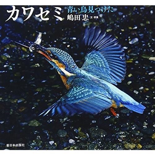 カワセミ―青い鳥見つけた (日本の野鳥) 中古 古本|zerothree