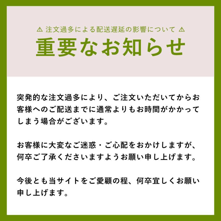 【公式】TokyoCamp 焚き火台 焚火台 軽量 ミニ 焚火 ソロ コンパクト|zootproduct|11