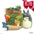 メーカー:■神田直接 メーカー品番:365599葉っぱ/39972多肉x6 _gardening s...