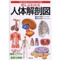 ぜんぶわかる人体解剖図 系統別・部位別にわかりやすくビジュアル解説