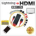 HDMI 変換アダプタ iP...