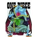 ONE PIECE Log Collec...