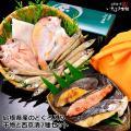 敬老の日ギフト 旬の干物と西京漬の詰合せ 高級魚のどぐろ・祝鯛(連子鯛)・白イカ・沖ギス干物と銀だら...