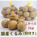 殻付きくるみ 信濃くるみ Lサイズ / 1kg 自社栽培 スーパーフード オメガ3 健康 美容 スイ...