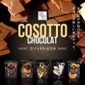 割れチョコ 訳あり チョコレート クリスマス チョコ コソットショコラ45g ビターチョコ 選べるフ...