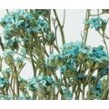 【ドライフラワー】 1束(約30g)  約40-45cmL 花径約0.5-0.8cm  *自然の生花...