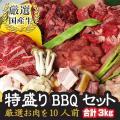肉 10人前 特盛 計3キロ 焼肉セット 宮崎牛 カルビ ギフト 焼肉 送料無料