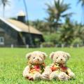 ☆商品説明☆  とってもかわいいくまのぬいぐるみがハワイならではのハワイアンベアーとして販売♪口と両...