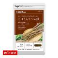 サプリ サプリメント 国産ごぼう入りヘム鉄 〜葉酸配合〜 約1ヵ月分 ダイエット